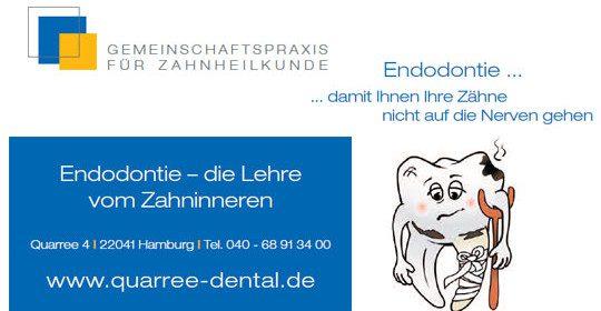 Endodontie – die Lehre vom Zahninneren